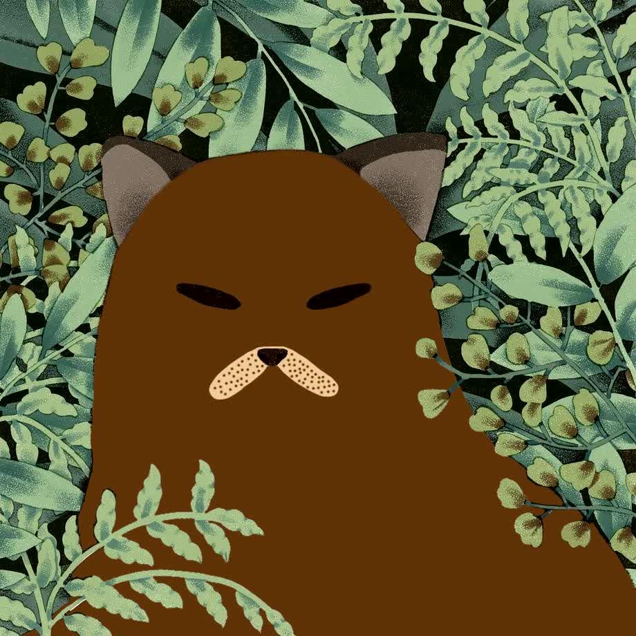 Gondola kitty. .. MLVI - Cat dreams, for those curious.