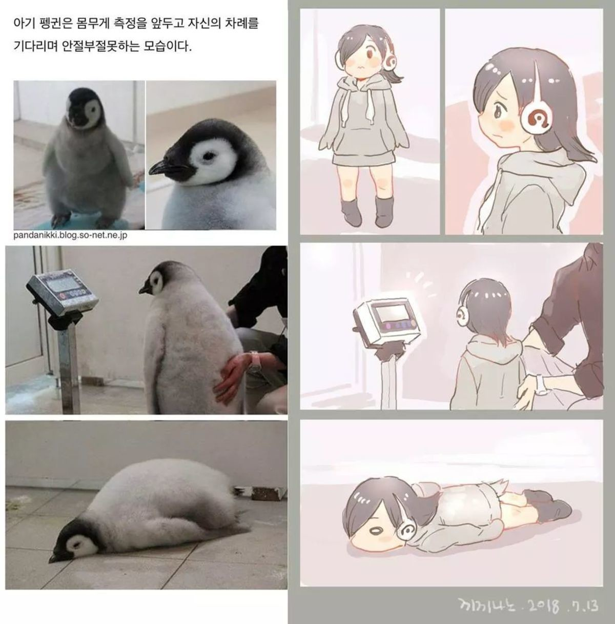 Baby Pengu. join list: MonMusuManiacs (1579 subs)Mention History join list:. i can't it hurts too much