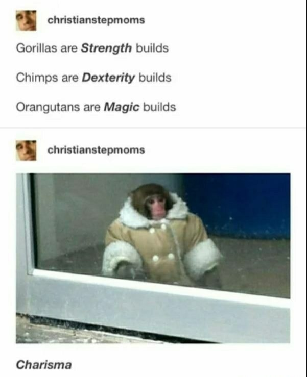 Builds. .. WRONG GORILLAS ARE STRENGTH BUILDS CHIMPS ARE STRENGTH BUILDS ORANGATANS ARE S T R E N G T H BUILDS