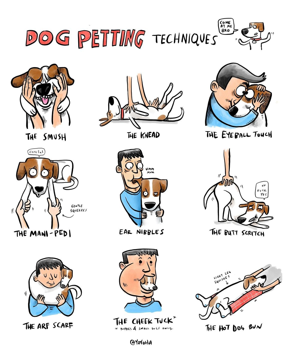How to pet a dog. .. I can say that these are all valid and not strange. I sometimes lick my dog's eye.