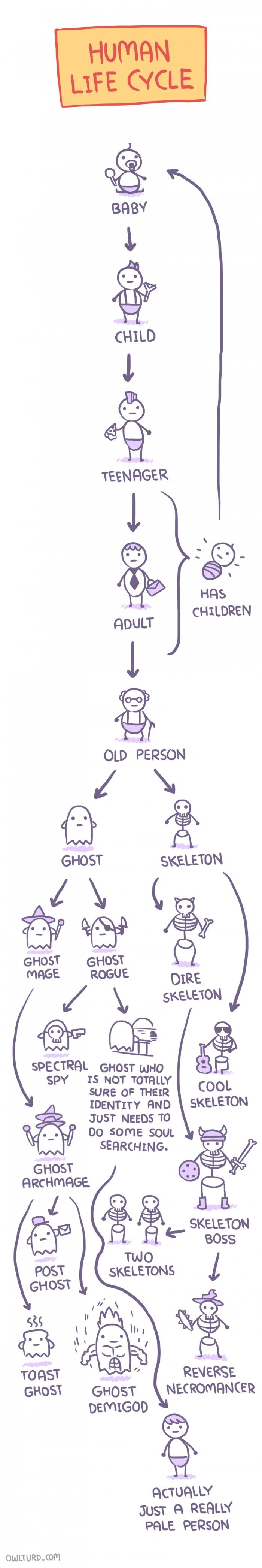 Human life cycle. . BR ipl GHOST SKELETON GHOST GHOST mesa ROGUE mg; a( Cfri, s\ GHOST we ti) SPY IS NOT romote COOL SKELETON SURE OF THEIR IDENTITY FIND JUST N