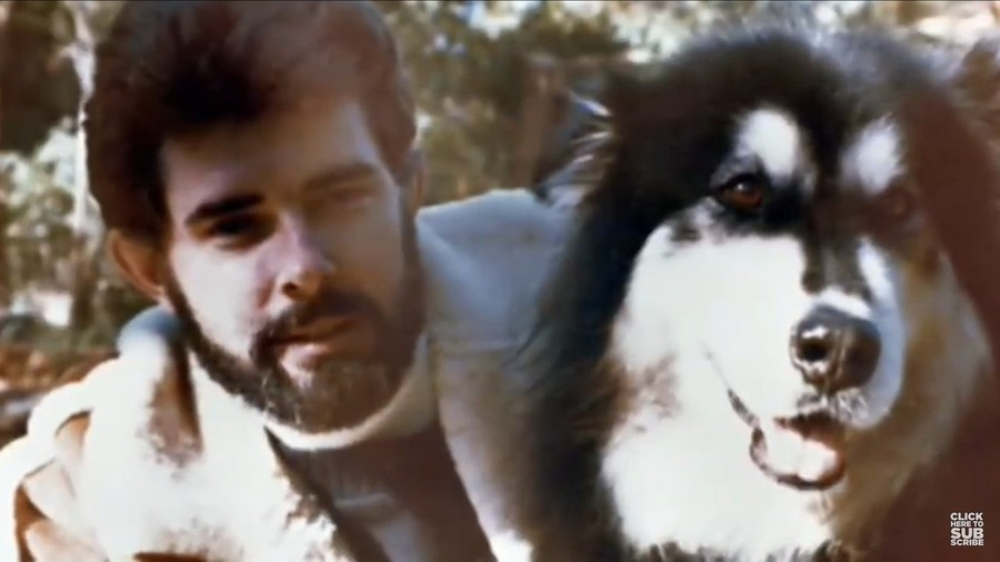 "Inspiration for Chewbacca. George Lucas' dog in the late 1970's was named Indiana , who later was the inspiration for Indiana Jones.. ""We named the dog Indiana"""