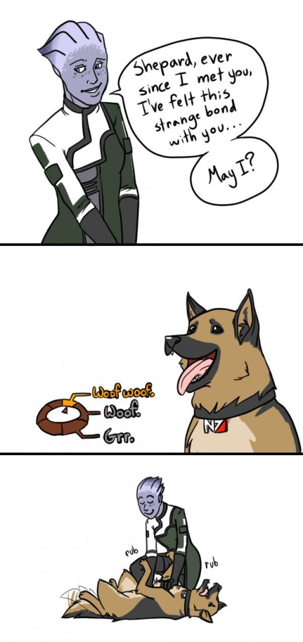 Paragon Shepard. I know it's a repost, but if it made you laugh, can you help me level up?.. Is it bad that I still thought something sexual was going to happen even after I saw the dog?
