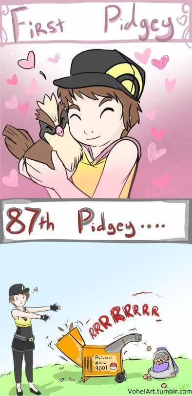 Pidgey. .. >CURRENT YEAR >Not hoarding your easy to evolve Pidgeys (Caterpie's and Weedles) , then evolving all of them at once under the effects of a lucky egg for