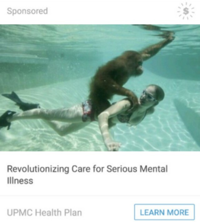 Revolution. .. Swimming with an ape would help my mental health