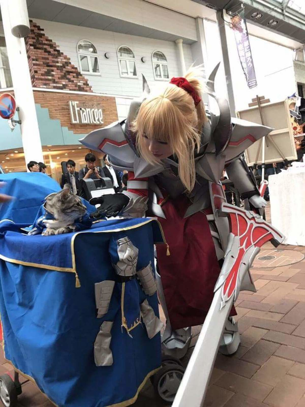 Saber Lion Irl. join list: Lewds4DHeart (1600 subs)Mention History join list:. Smug as