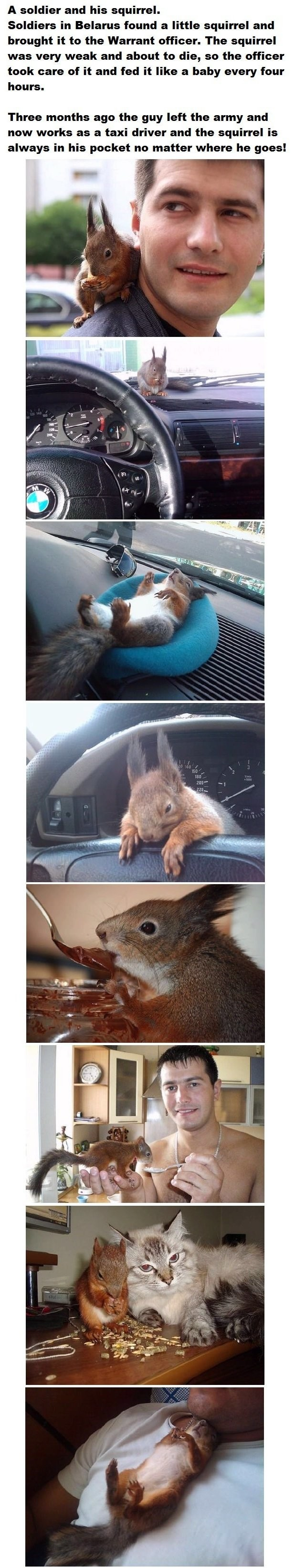 Squirrel Bro. . A soldier and his squirrel. Soldiers in Belarus found a little squirrel and brought it to the Warrant officer. The squirrel was very weak and ab