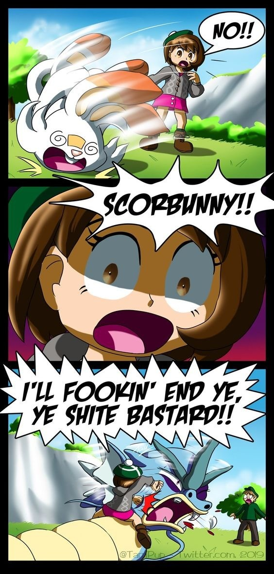 Your Pokemon Fainted!. Trainer Used Rage!..