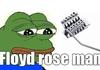 floyd rose.